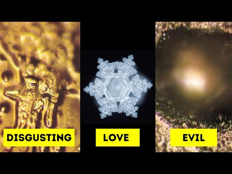 Water Has Memory! Dr. Masaru Emoto's Water Experiment!