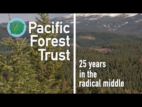 Pacific Forest Trust: 25 years in the radical middle