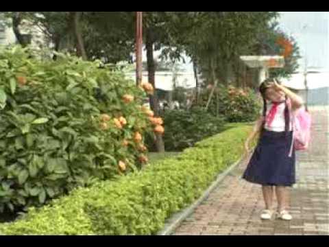 ông mặt trời - Trần Hoài Băng Doremi 2008