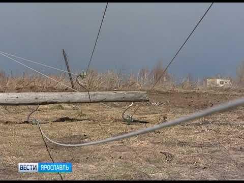 Экстренное предупреждение: на территории Ярославской области ожидается гроза