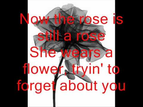 A rose is still a rose Aretha Franklin lyrics