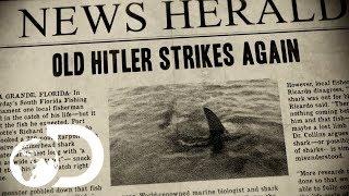 Old Hitler   Monster Hammerhead