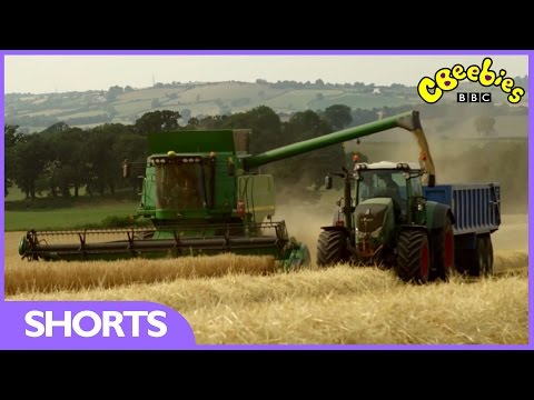 CBeebies: Harvest Time With Down On The Farm