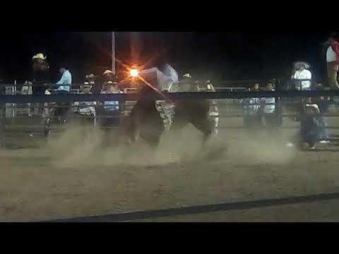 Jaripeo ranchero en  firebaugh ca