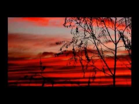 vbots.ru - Перед боем тихие, тёплые вечера И покрыт тревожною сон тишиной У вчерашних мальчиков гимнастерки новые И письмо от мамы с собой  Здесь всю ночь горела звезда одинокая И туман прозрачный лежит у реки Здесь березы белые, травы высокие Враг не дол