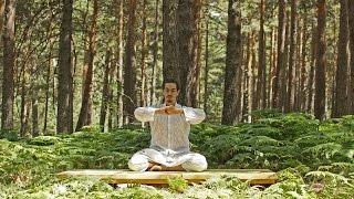 Vídeo de yoga kundalini para despertar la energía espinal