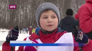 В Богородском районе прошли соревнования «Теряевская лыжня»