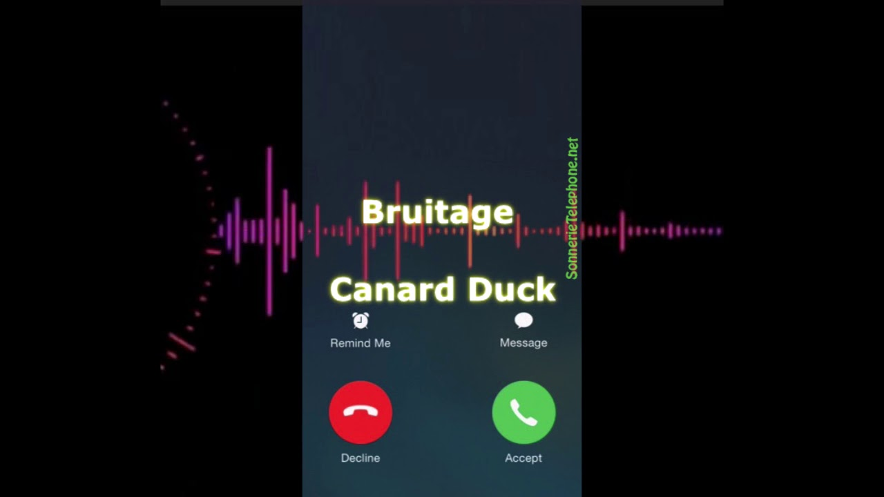 t l charger bruitage canard duck mp3 grauite pour telephone youtube. Black Bedroom Furniture Sets. Home Design Ideas