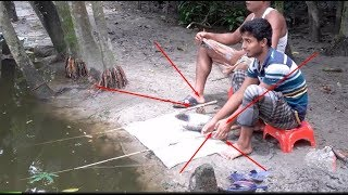 114 | Live Fish Hunting In village | फ़िशिंग संगतता | মাছ ধরা প্রতিযোগিতা | Traditional Fishing