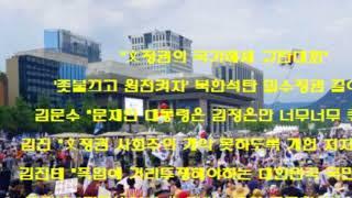 ■애국시민의 함성!  대한문 태극기 집회