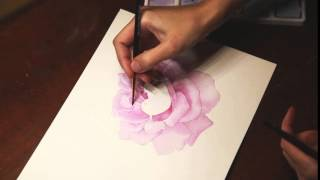 Drawing a rose watercolor. Preview.