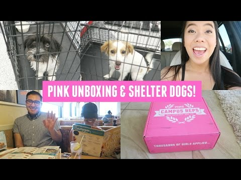 Heart To Heart, Doggies, PINK Unboxing, IHOP w/ Omar & Melena!