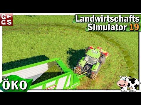 ls19-Öko-🐄-frisches-wasser-und-gras-für-kühe-im-glantal-in-der-südpfalz-#2