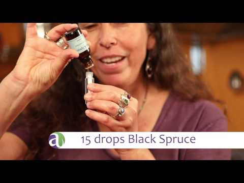 black-spruce-essential-oil-uses