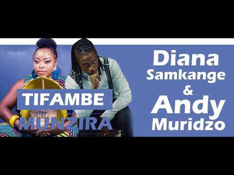 Diana Samkange & Andy Muridzo - Tifambe Munzira (Audio)
