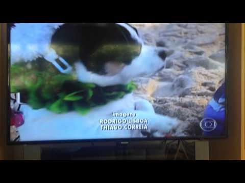 Bali is on Brazilian Sport tv