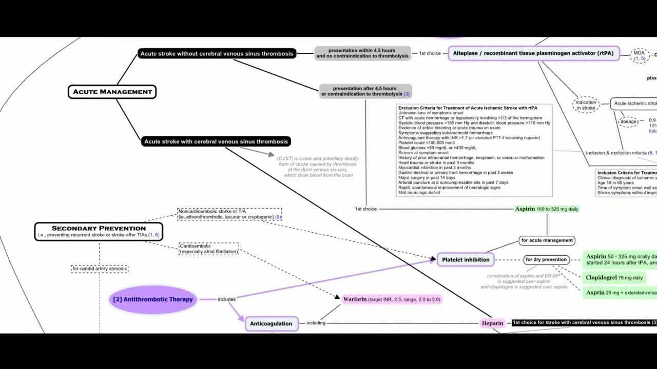 Ischemic Stroke Concept Map - YouTube