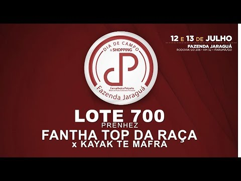 LOTE 700