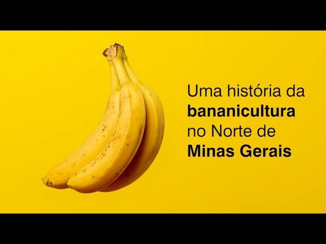 Uma história da bananicultura no Norte de Minas Gerais