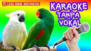 Download Mp3 Burung Kakak Tua 🎵🎤 Lagu Anak Versi Karaoke Tanpa Vokal  Kakatua