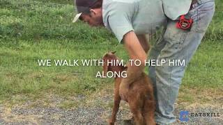 Walking with Leo, A Blind Baby Goat