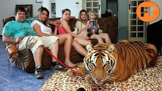 Top 8 Animales Salvajes Adiestrados que no Podrás Creer  - FULL TOPS