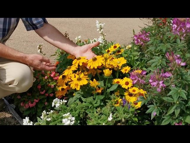 Ein neues Wort zum Sonntag: Im Einklang mit der Natur