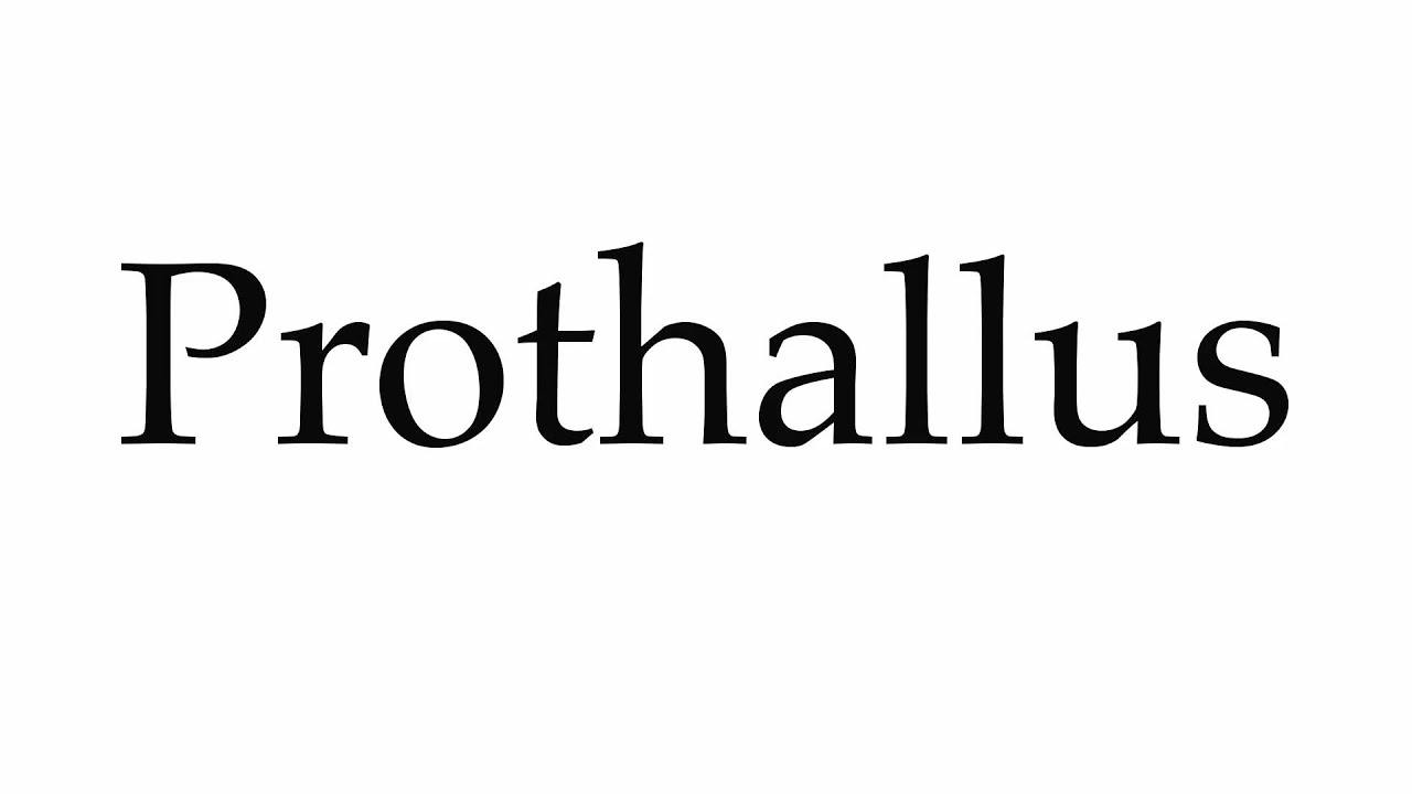 how to pronounce prothallus youtube
