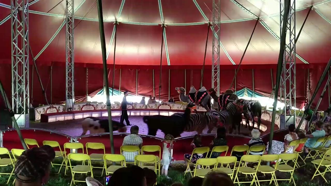 Zirkus Spiel