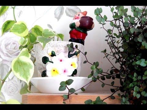 Фото Идея дизайна квартиры живыми цветами инстаграм