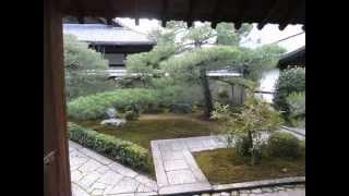 大徳寺(だいとくじ)は、京都府京都市北区紫野大徳寺町にある寺で、 臨...