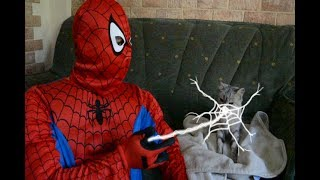 Spider Man Homecoming Parodia Hombre araña