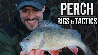 Perch Fishing with Prawns - Rigs & Tactics | TAFishing