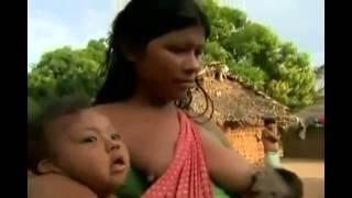 Repeat youtube video mujer da de amamantar a un mono medium