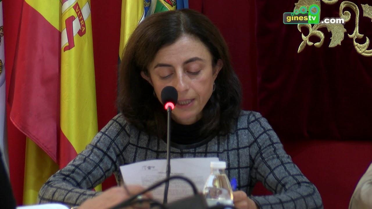 Pleno Extraordinario y Urgente del Ayuntamiento de Gines - 16 de noviembre de 2018