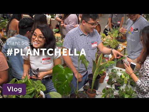 """LA Plant Swap '19 (a.k.a. """"Plantchella"""") — Vlog 012"""