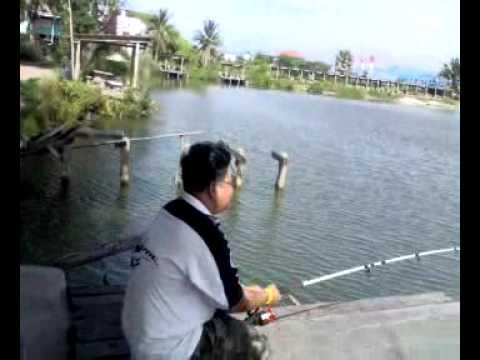 เย่อกับปลา.. เทพา เจ๊เอ็งสามโคก