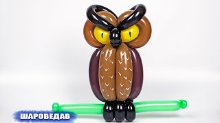 Сова из воздушных шаров / Owl of balloons