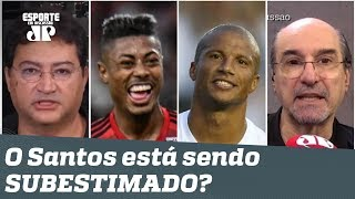 Flamengo x Santos: o Peixe está sendo SUBESTIMADO antes do JOGÃO?