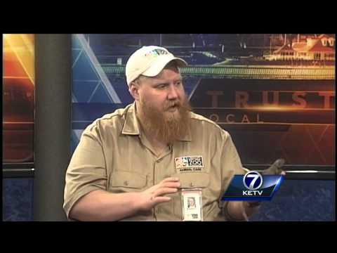 Omaha's Henry Doorly Zoo and Aquarium interview