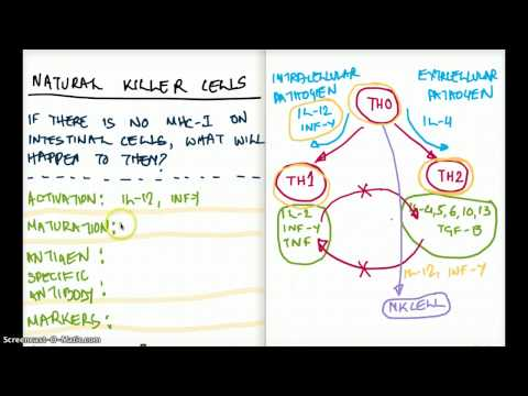 Easy Ways to Understand Natural Killer Cells