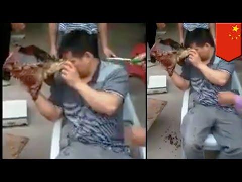 Animal Revenge On Humans: Man In China Hacks Turtle In Two, Gets Eye-for-an-eye Response - TomoNews