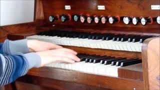 J.S. Bach, Toccata ('Dorian'), BWV 538, played on pedal harmonium, Martien de Vos