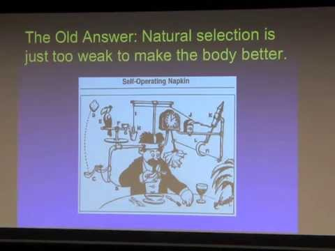 Evolutionary Medicine at 20:  Not yet Mature but on the Way