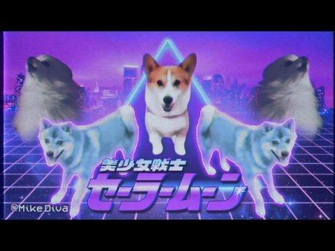 dog_meme.avi thumbnail