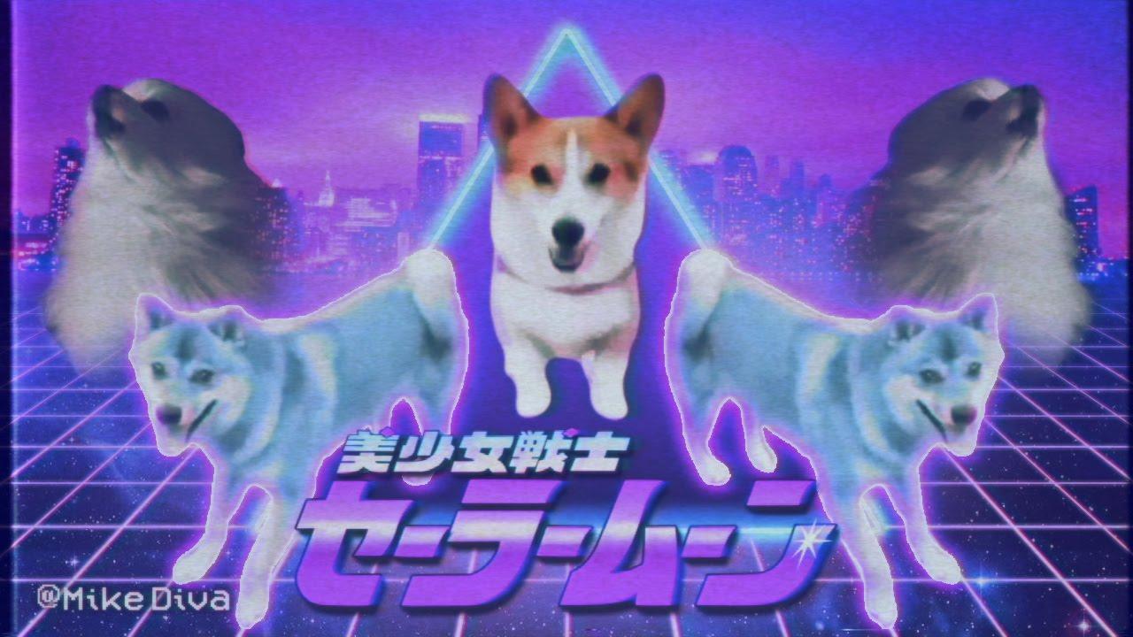 maxresdefault dog_meme avi youtube,Dog Running Meme