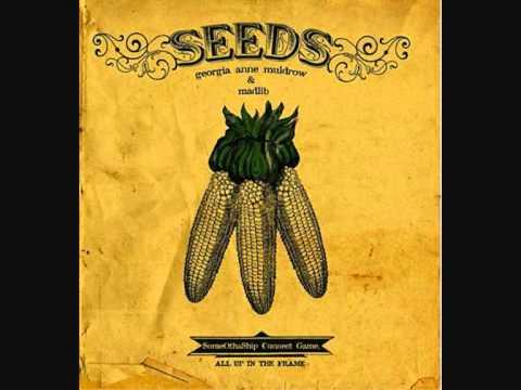 Georgia Anne Muldrow.-Seeds. mp3