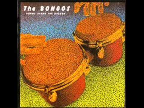 The BONGOS - Automatic Doors