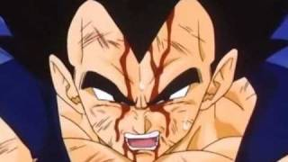 DBZ-If Today Was Your Last Day