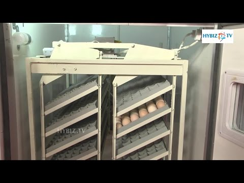 Hyderabad Poultry Equipments Poultry India 2015